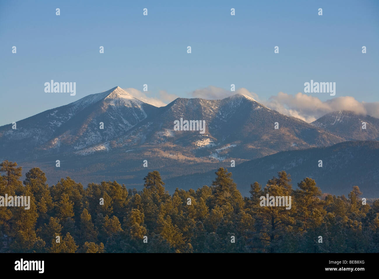 San Francisco Peaks on winter morning, viewed from NAU campus, Flagstaff, Arizona, USA - Stock Image