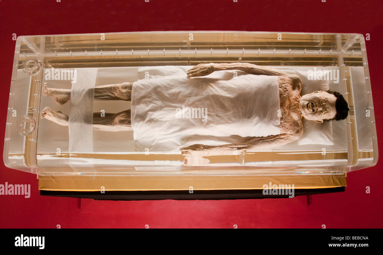 Marquise of Dai mummy from tomb at Mawangdui - Stock Image