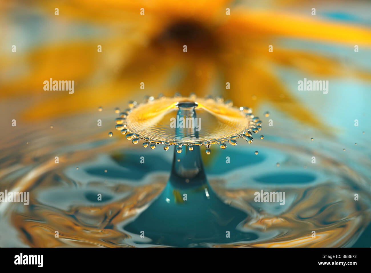 Water Drip - Stock Image