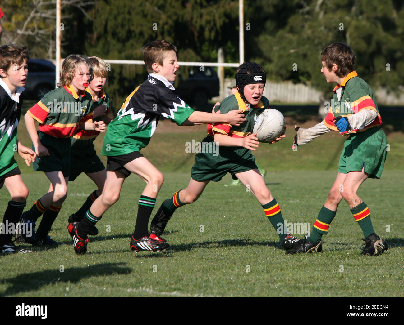 Young boys play rugby union in New Zealand - Stock Image