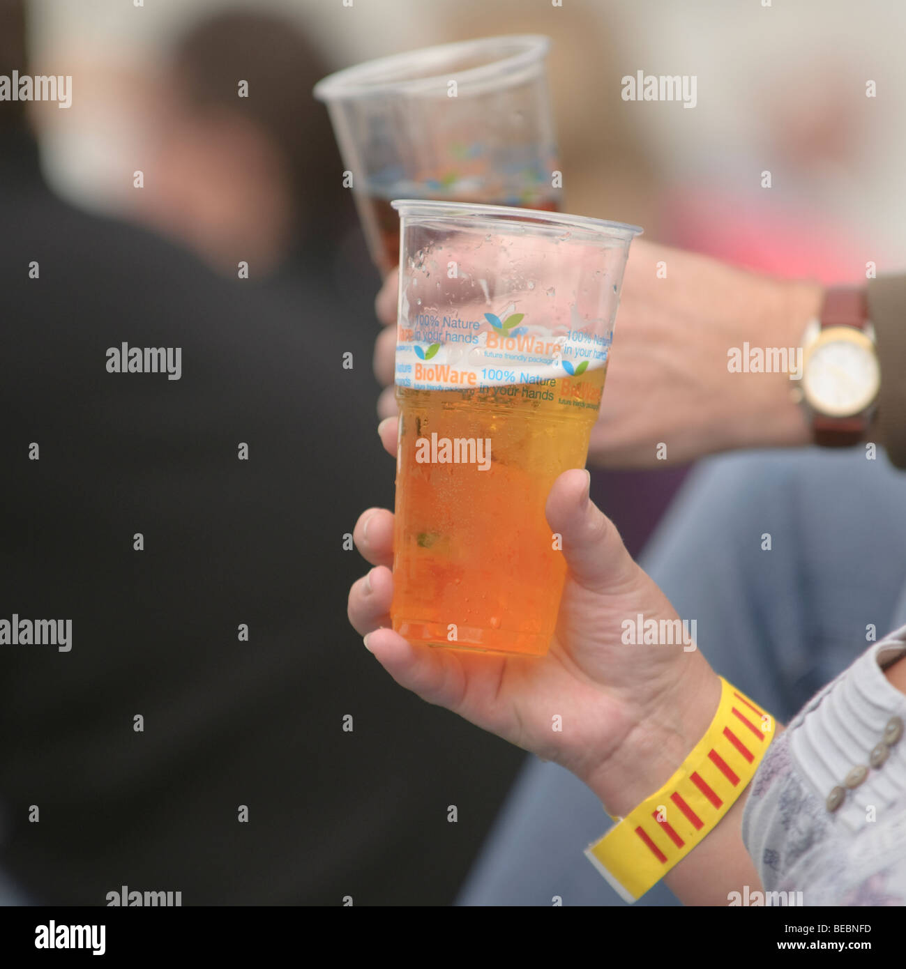 people drinking cider BIOWARE Bio-degradable plastic beer glasses at Abergavenny food festival, Monmouthshire south - Stock Image