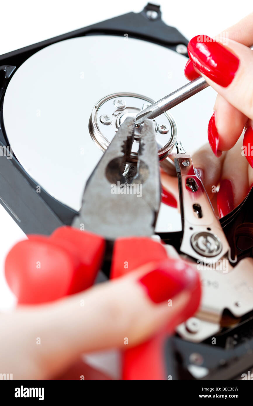 Woman repairing computer HDD. Isolated on white. - Stock Image