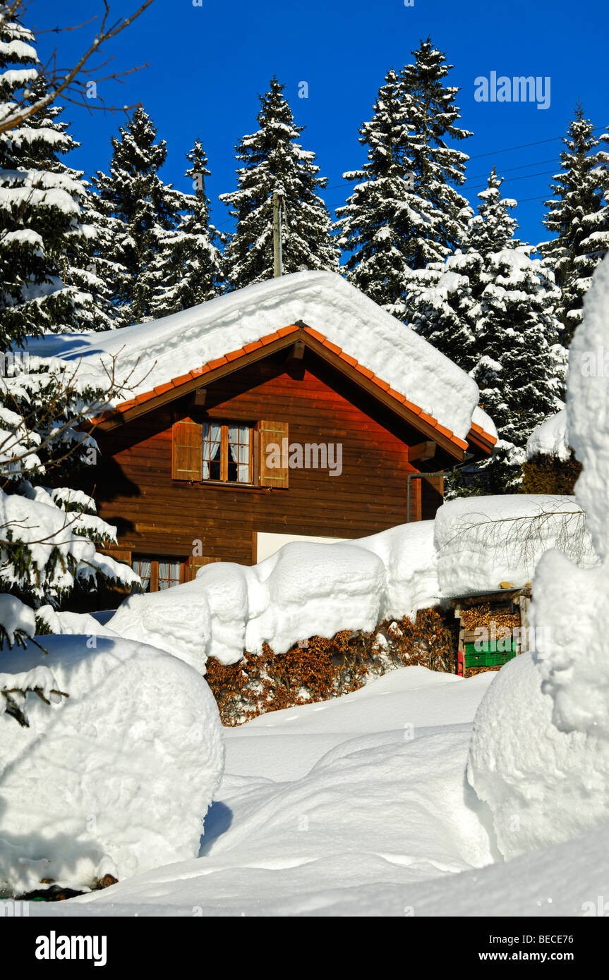 Snow-covered block house on the edge of a forest, Jura, Switzerland - Stock Image