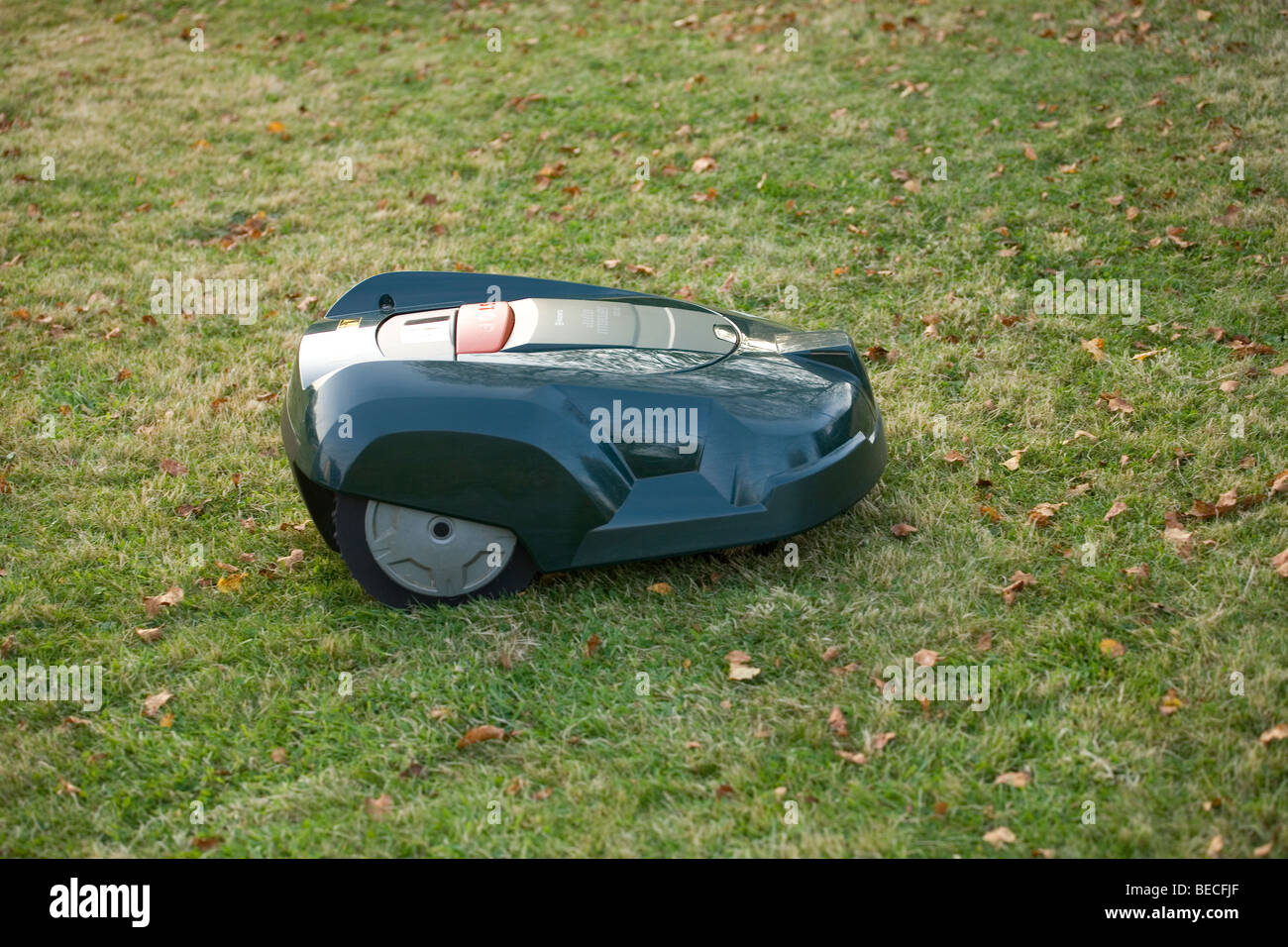 Automatic robot lawn mower cutting grass side view - Stock Image