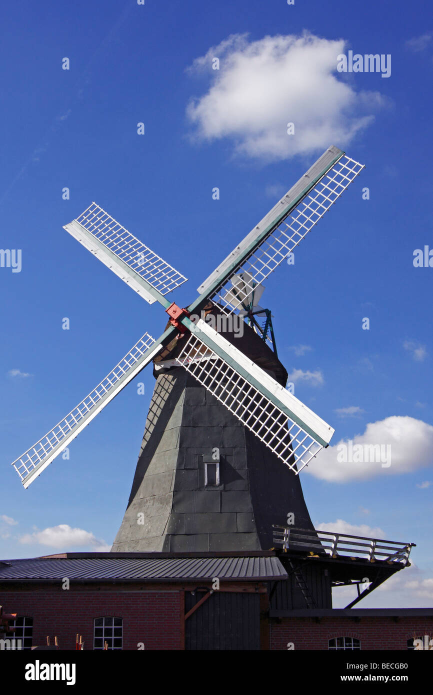 Old windmill 'Anna', Dutch style, Suederhastedt, Dithmarschen district, Schleswig-Holstein, Germany - Stock Image