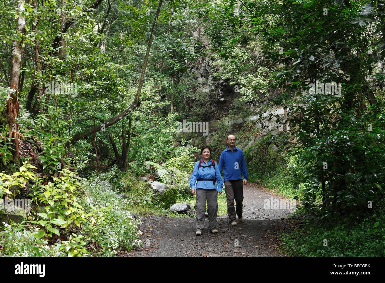 Couple walking on a path through the woods, Cubo de la Galga, El Canal y Los Tilos Biosphere Reserve, La Palma, Canary Islands, Stock Photo