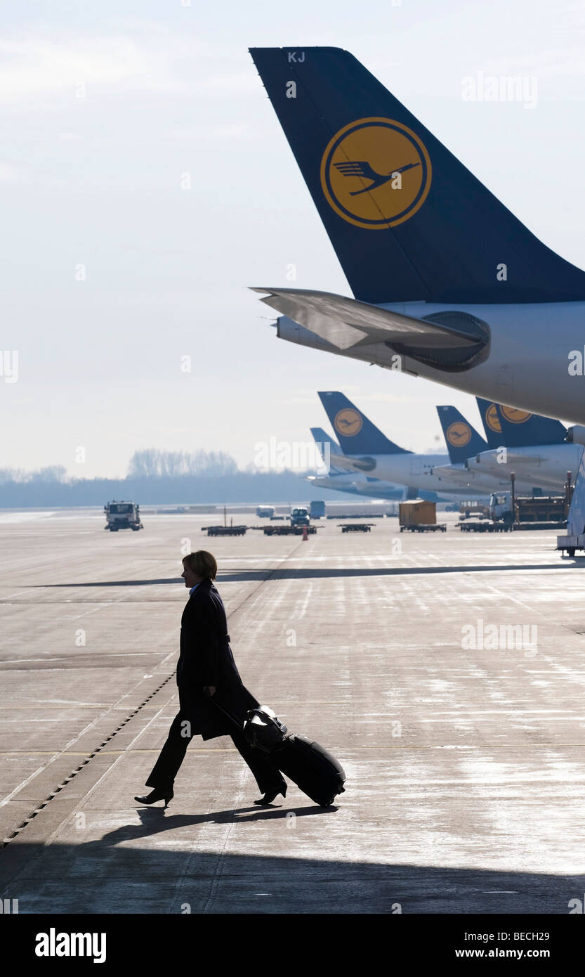 An air hostess of the German airline Lufthansa walking past a row of Lufthansa planes, Munich Airport, Bavaria, - Stock Image