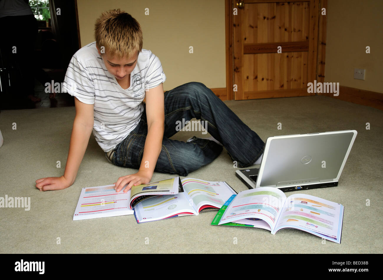 Teenager boy revising for GCSE exams student studying at home - Stock Image