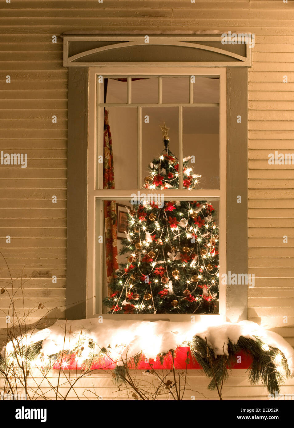 christmas tree in window stock photo 26104923 alamy. Black Bedroom Furniture Sets. Home Design Ideas