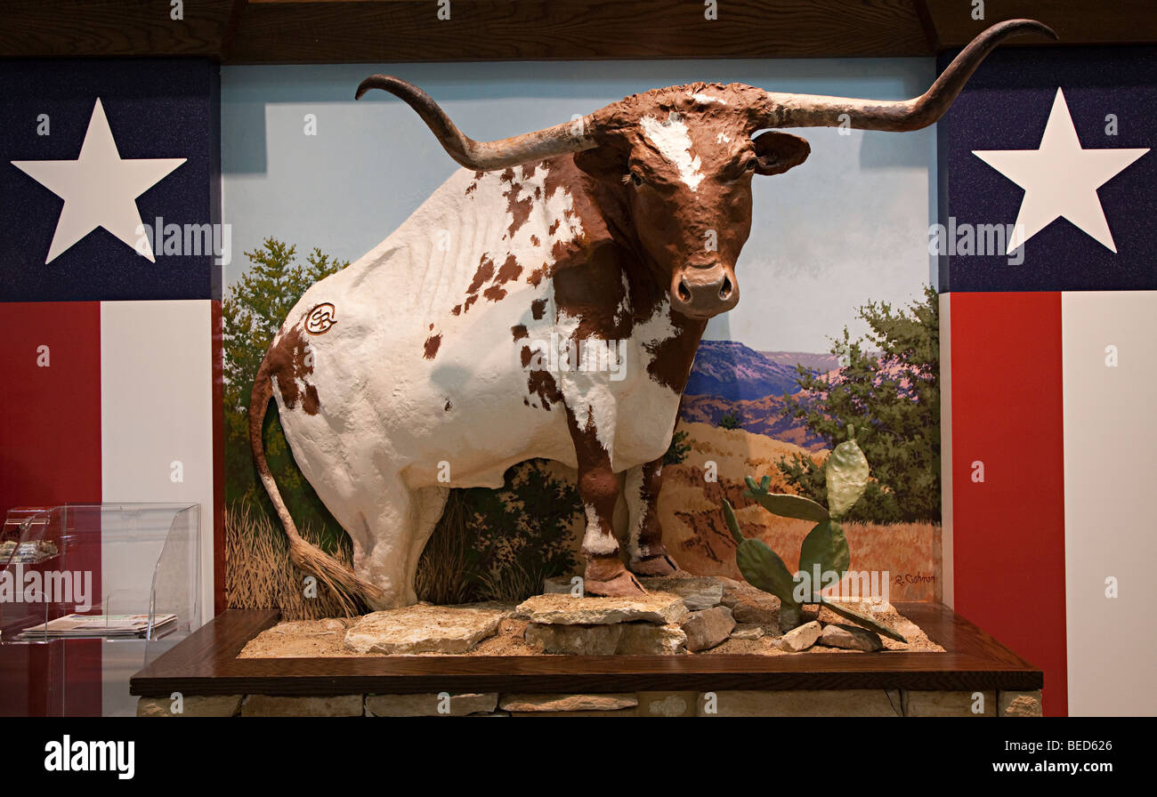 Longhorn steer motif on shop front Houston Texas USA - Stock Image