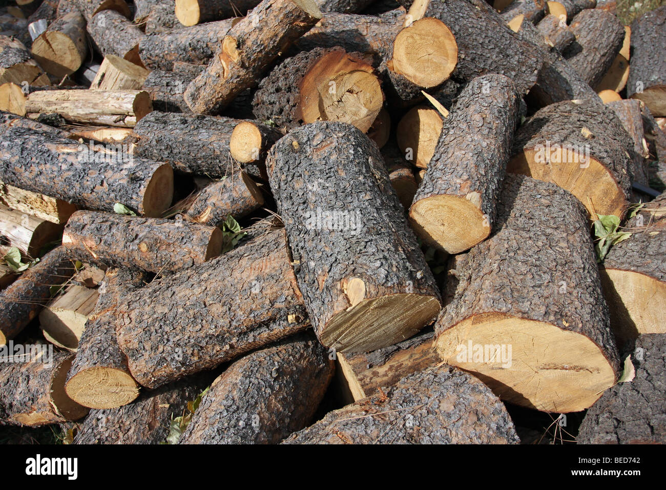 Fire wood pile of round lengths. - Stock Image