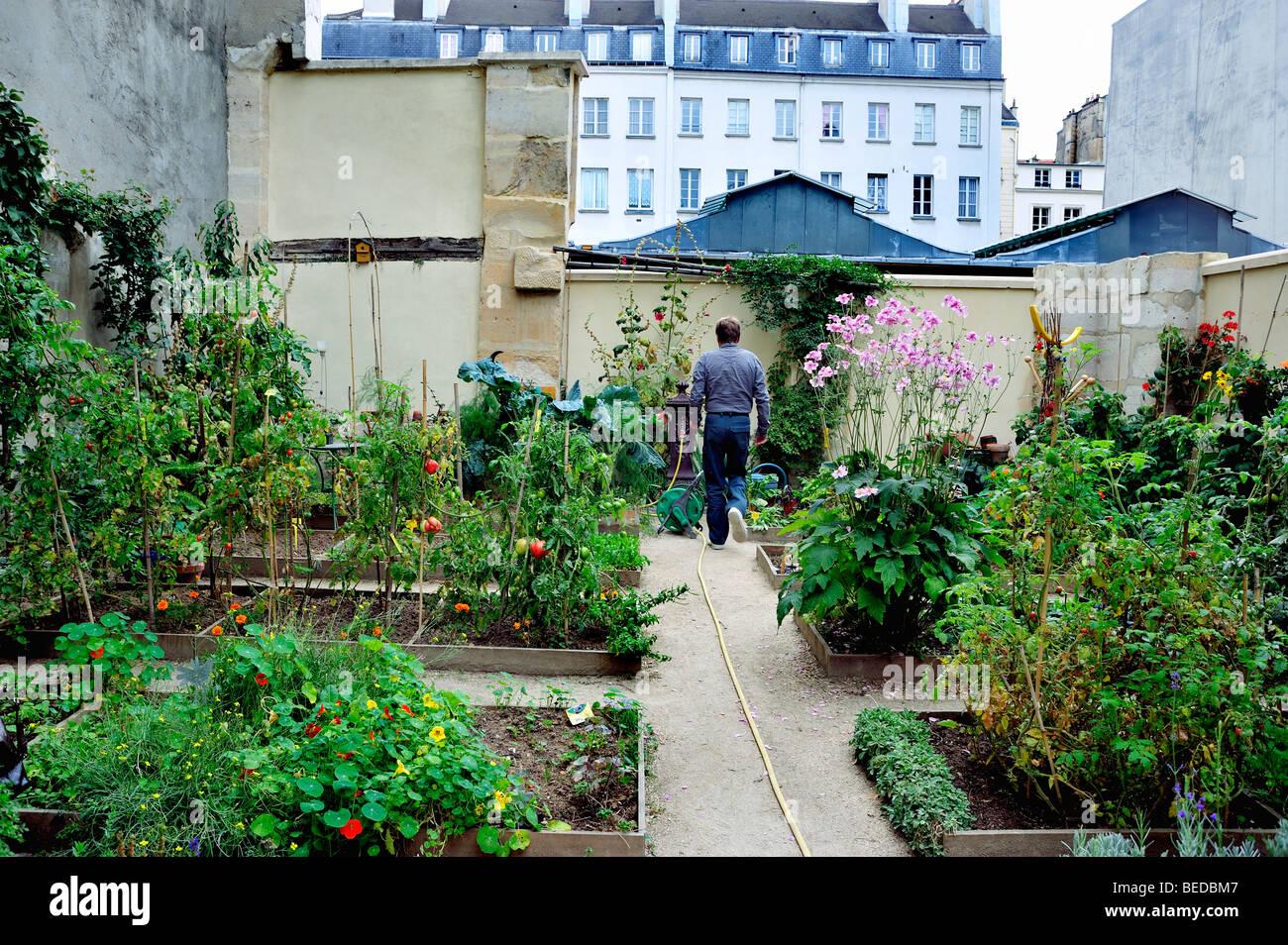"""Paris, France - Man Visiting Community Garden in the Le marais District, (Near the """"Marche des Enfants Rouge"""") Stock Photo"""