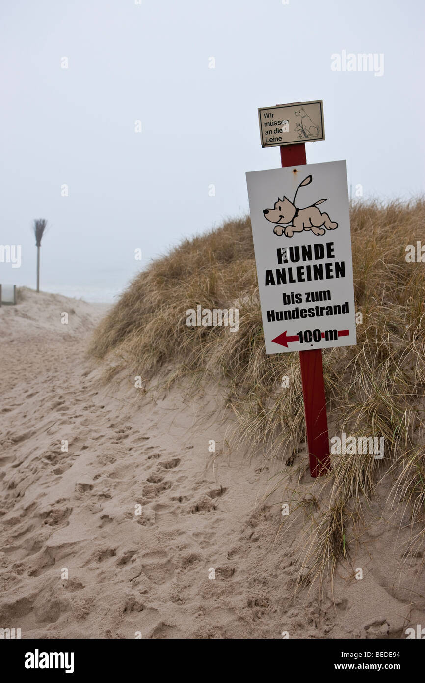 'Hunde anleinen', Keep dogs on a leash, instruction sign, Sylt Island, North Frisia, Schleswig-Holstein, - Stock Image