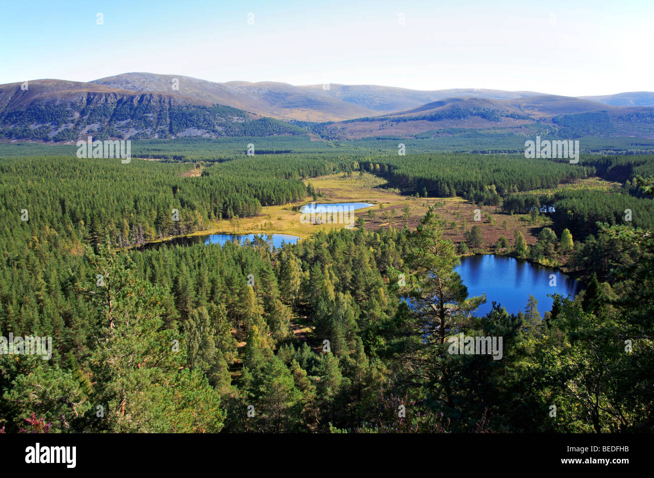 View of Uath Lochans from Farleitter Crag, near Aviemore, Inverness-shire, Scotland, United Kingdom, towards the - Stock Image