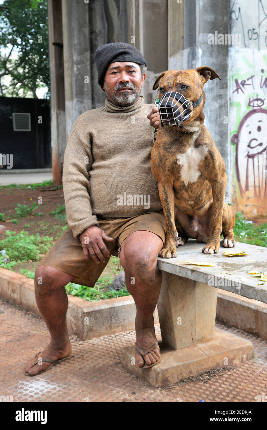 Old homeless man with a Pit Bull Terrier, Bras district, Sao Paulo, Brazil, South America - Stock Image