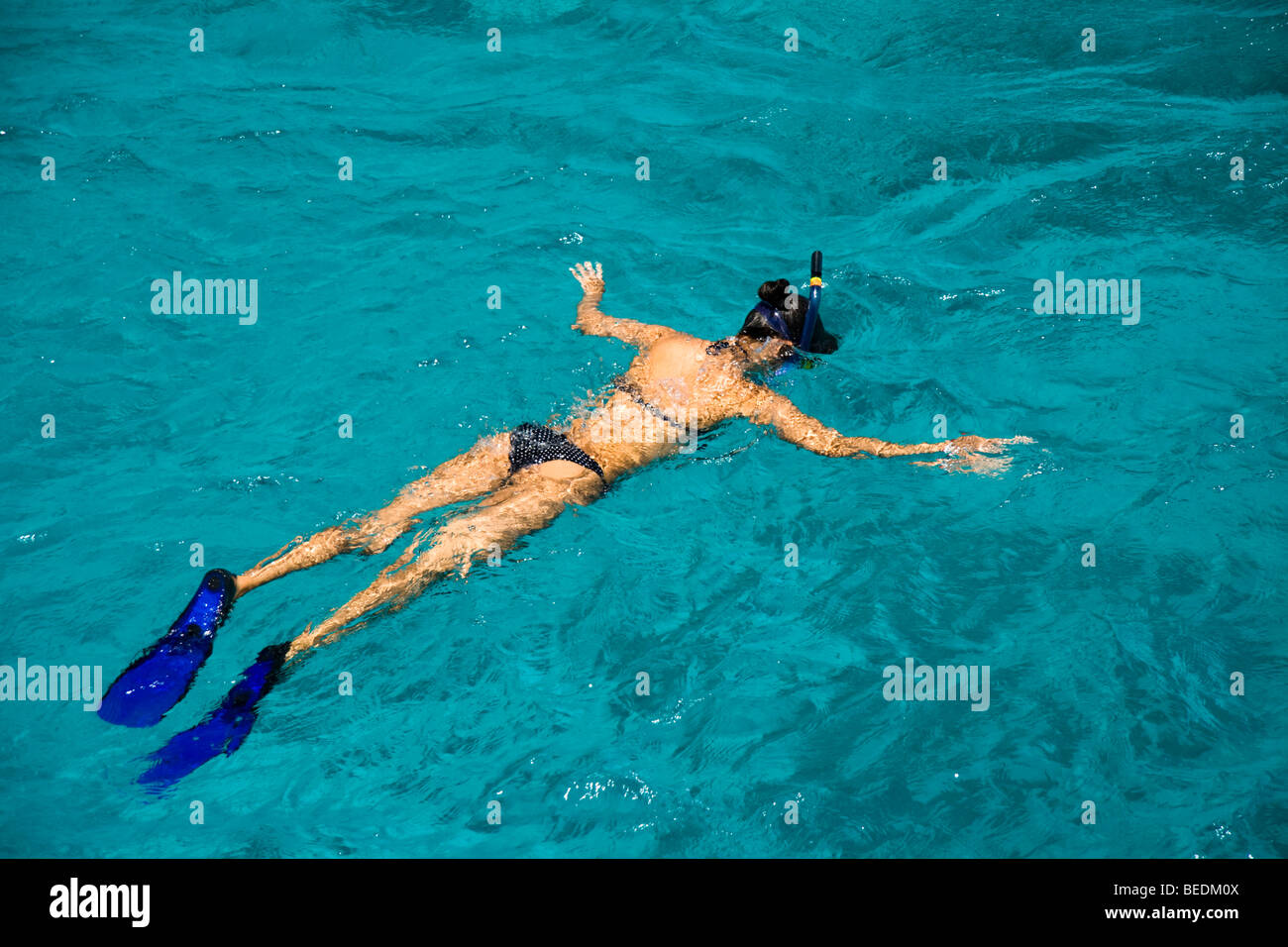 Woman snorkelling from Sharm el Sheikh, Red Sea, Egypt - Stock Image