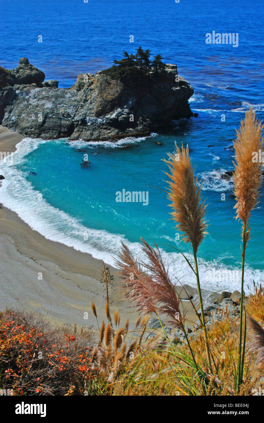 Grasses frame a view of McWay Cove at Julia Pfeiffer-Burns State Park - Stock Image
