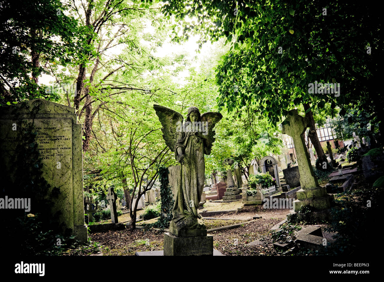 A Stone angel sculptured headstone stands over a grave amongst trees in Highgate Cemetery North London England UK - Stock Image