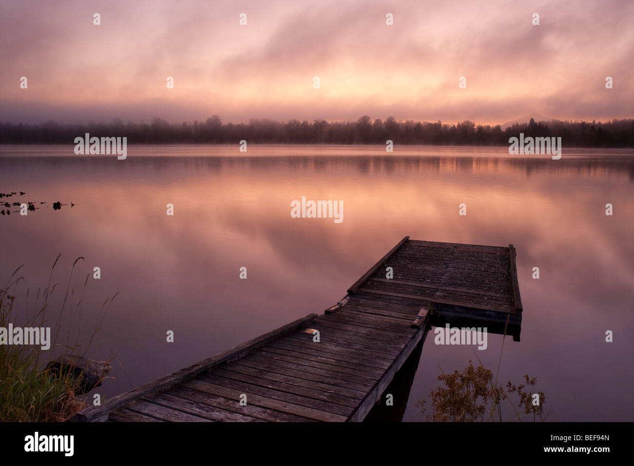 Lake Cassidy sunrise in fog with dock - Stock Image