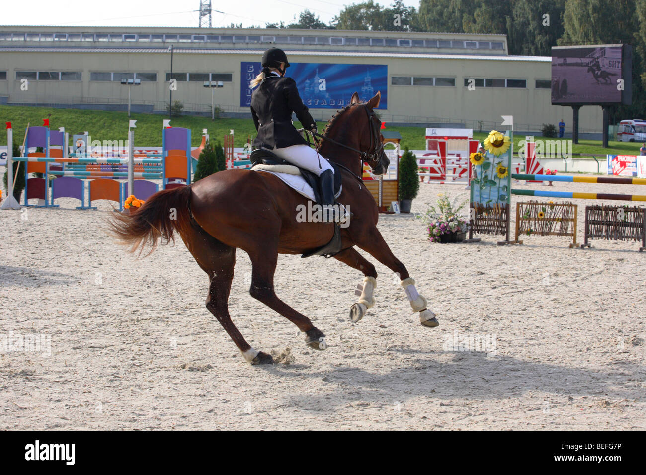 Horserider at a canter in showjumping arena at Moscow horse eventing competition 2009 - Stock Image