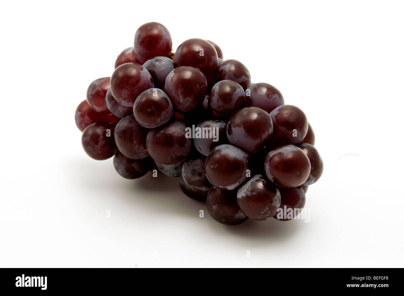 Isabella grape on a white background Stock Photo