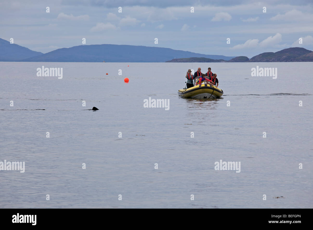 Whale watchers on a boat in the Isle of Skye, Scotland - Stock Image