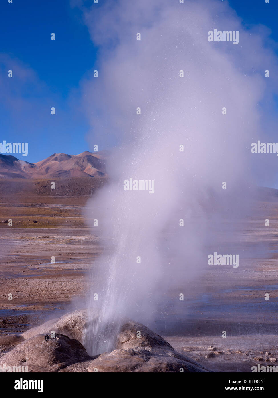 Eruption at Tatio Geysers, near San Pedro de Atacama in the Atacama Desert, Chile. - Stock Image