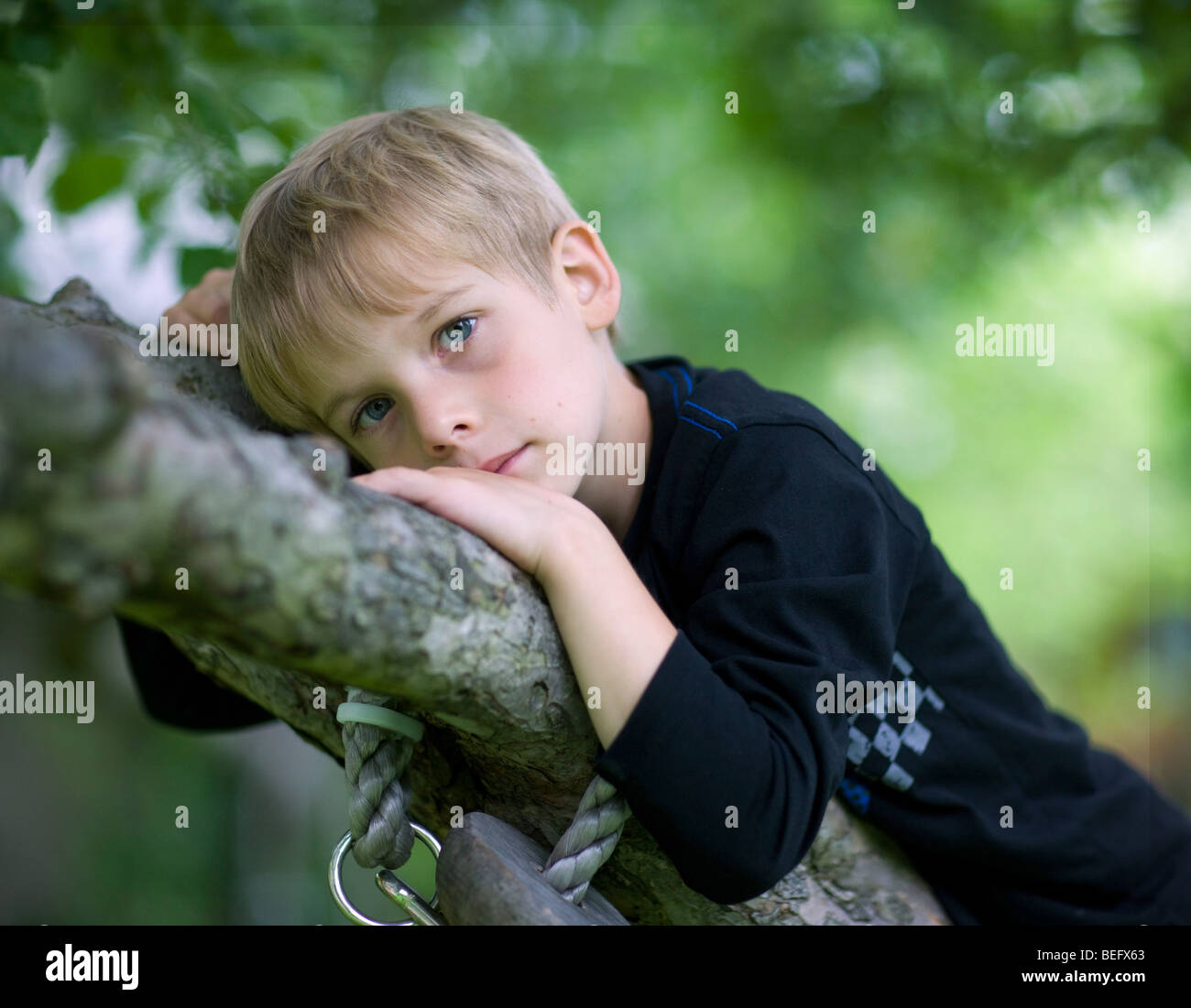 6 years old boy lying on a tree. - Stock Image