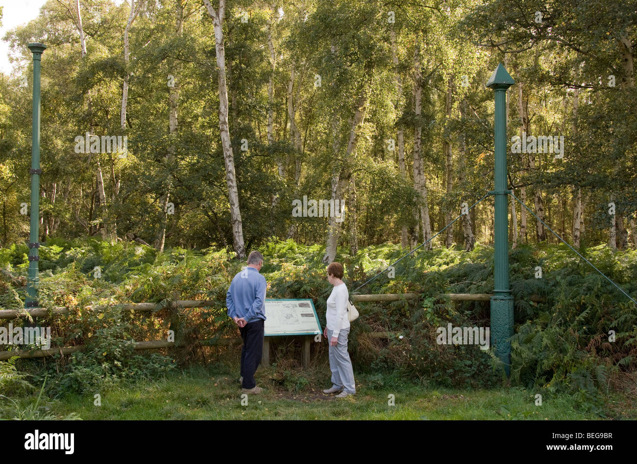 Visitors reading the information board relating to the cast iron columns at Holme Fen Nature Reserve, Cambridgeshire. - Stock Image