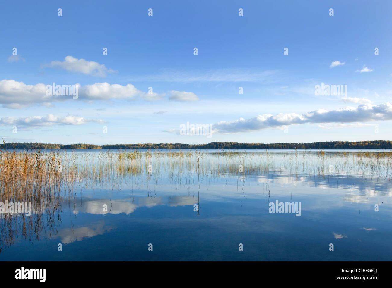Lake Vitträsk in Finland - Stock Image