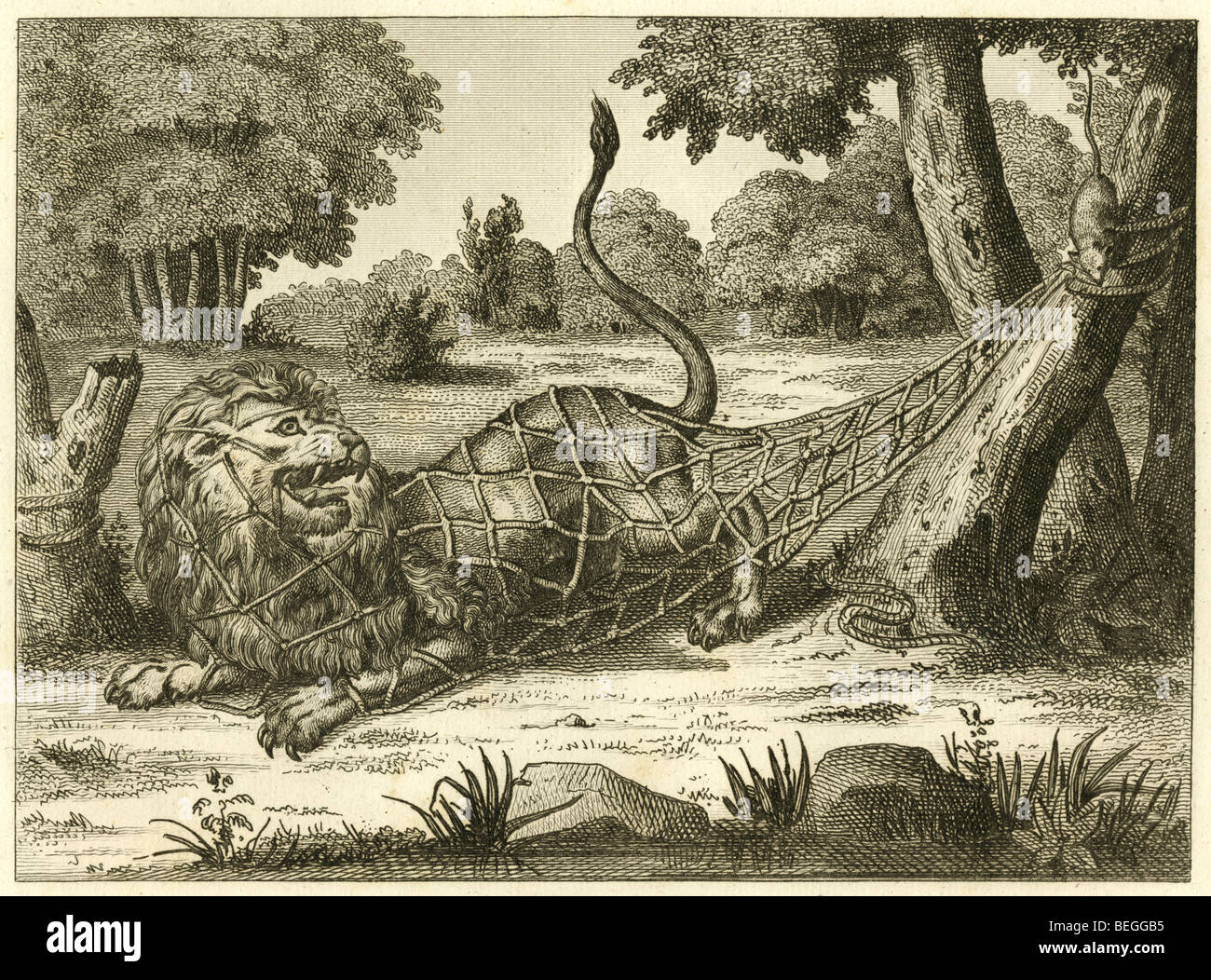 1834 French engraving of The Lion and the Mouse (Rat) fable. - Stock Image