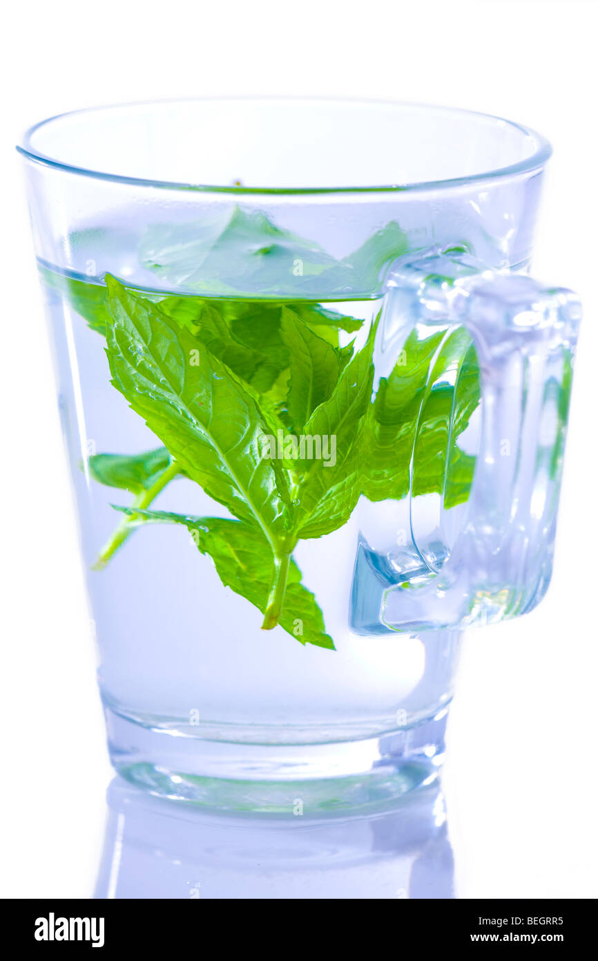 Green mint tea in a glass cup - Stock Image