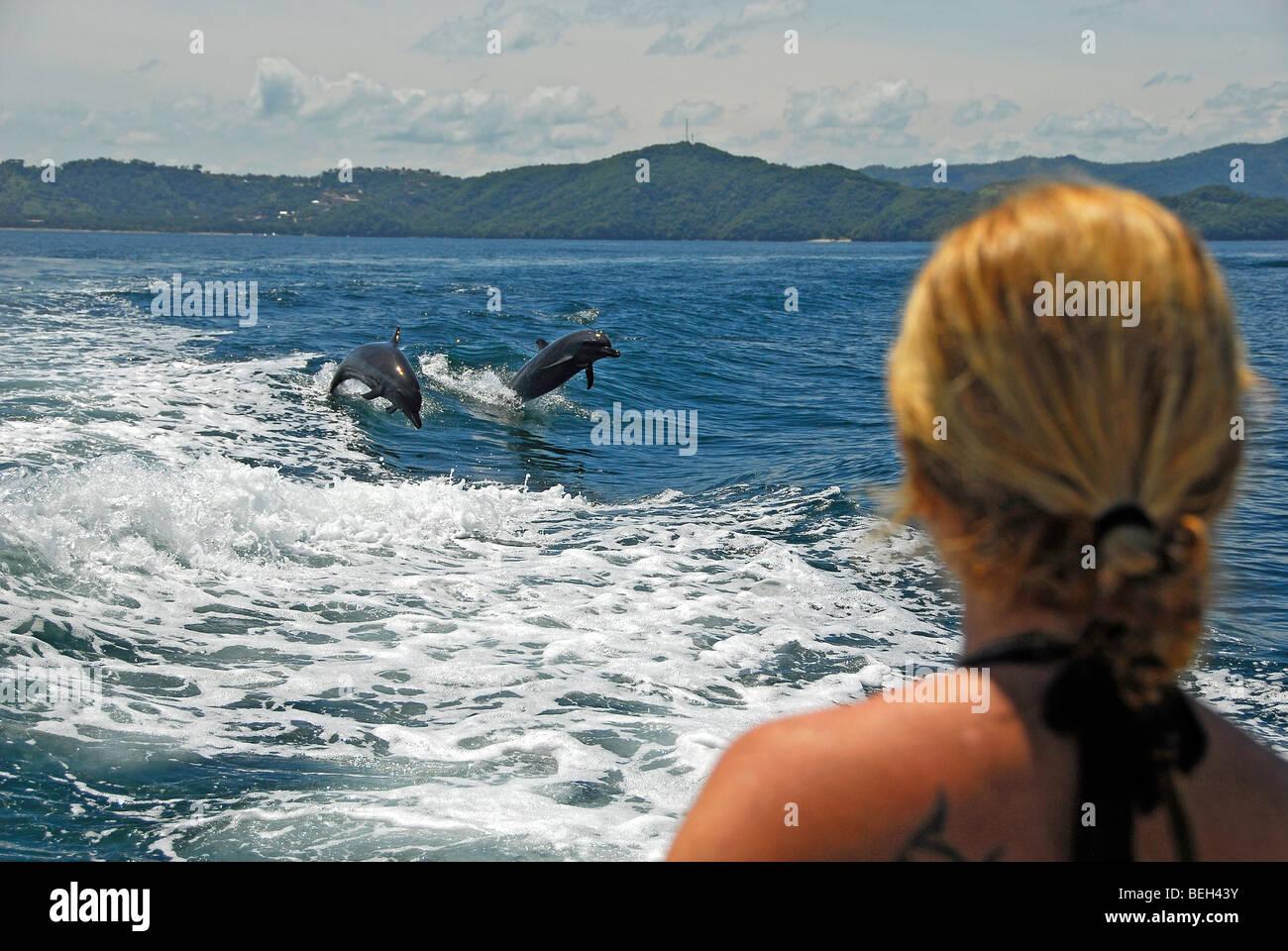 Dolphin watching, Stenella longirostris, Playas del Coco, Costa Rica - Stock Image