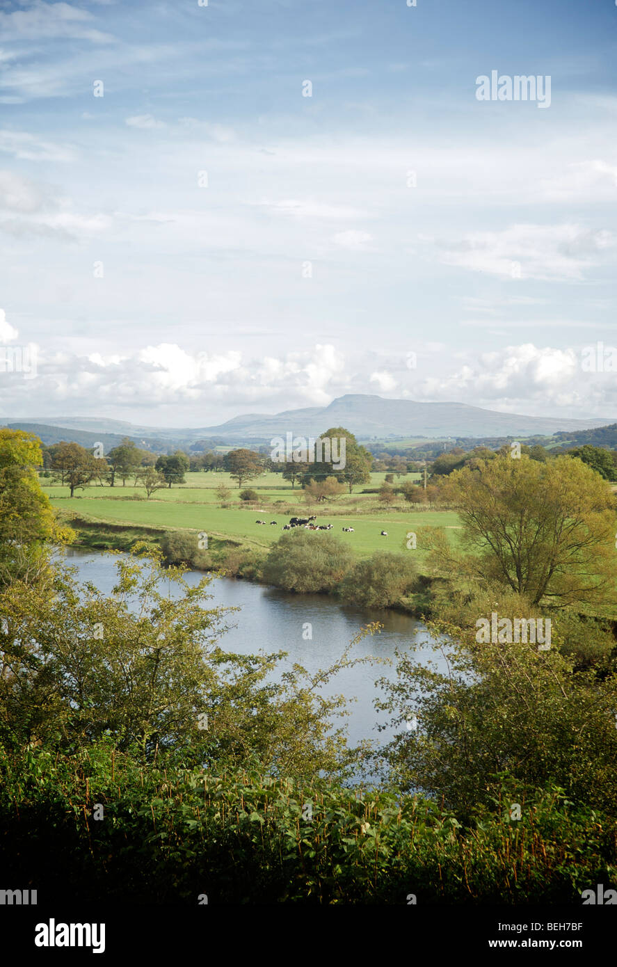 Pen-y-gent from Crook o' Lune,Lancaster - Stock Image