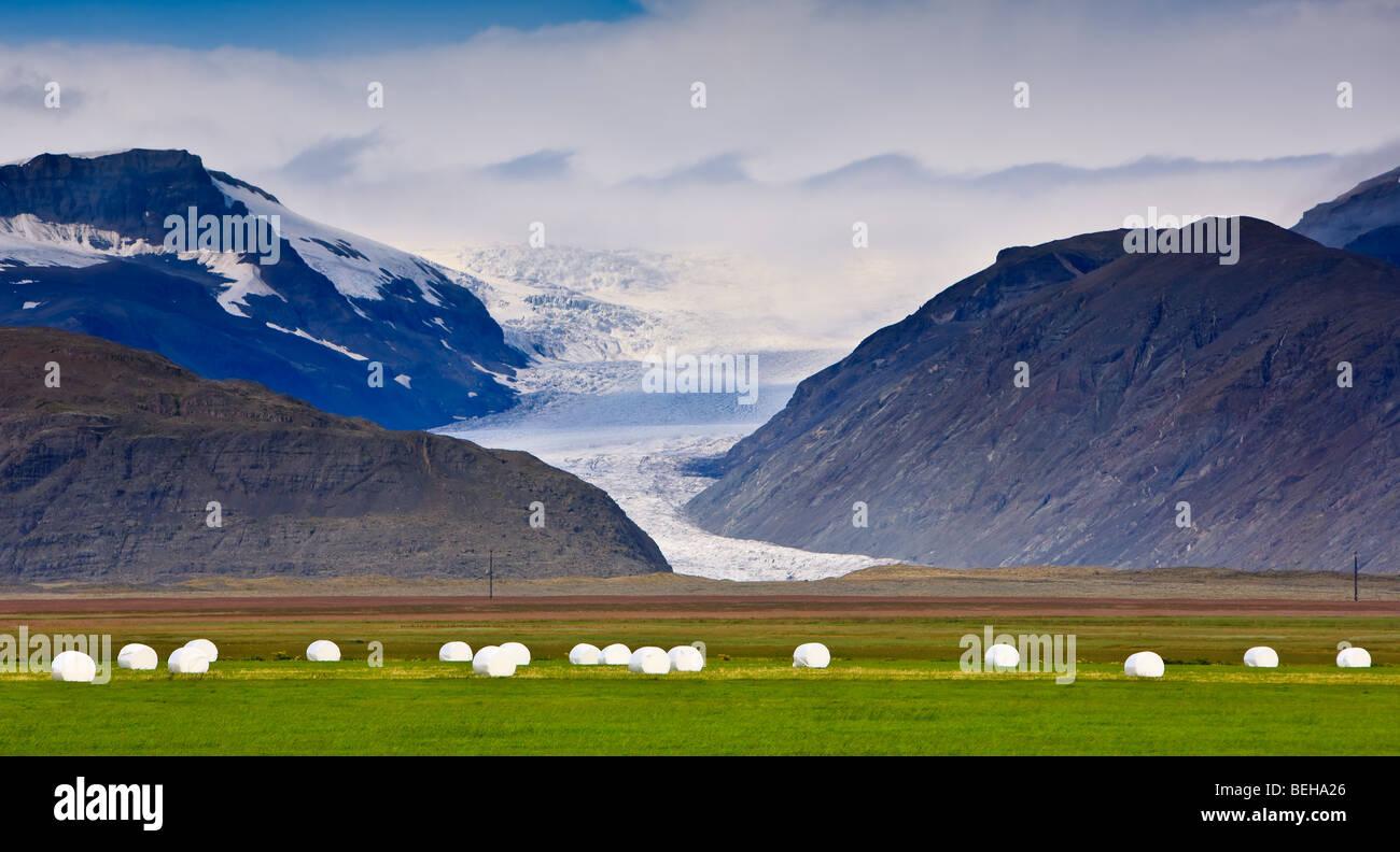 Haystacks near Hofn, Iceland Stock Photo