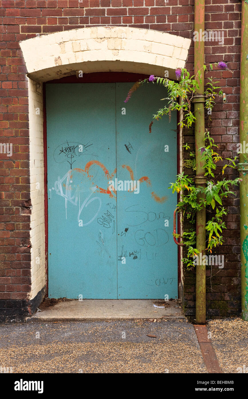 Boarded doorway with Buddleia growing from the wall, Plymouth City Centre, Devon, UK - Stock Image