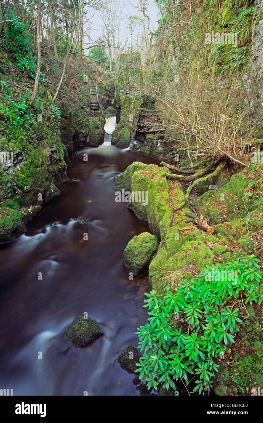 Rumbling Bridge Fife