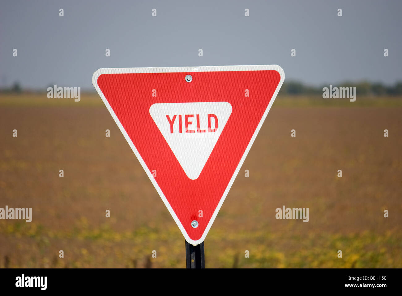 Yield sign with rural background - Stock Image