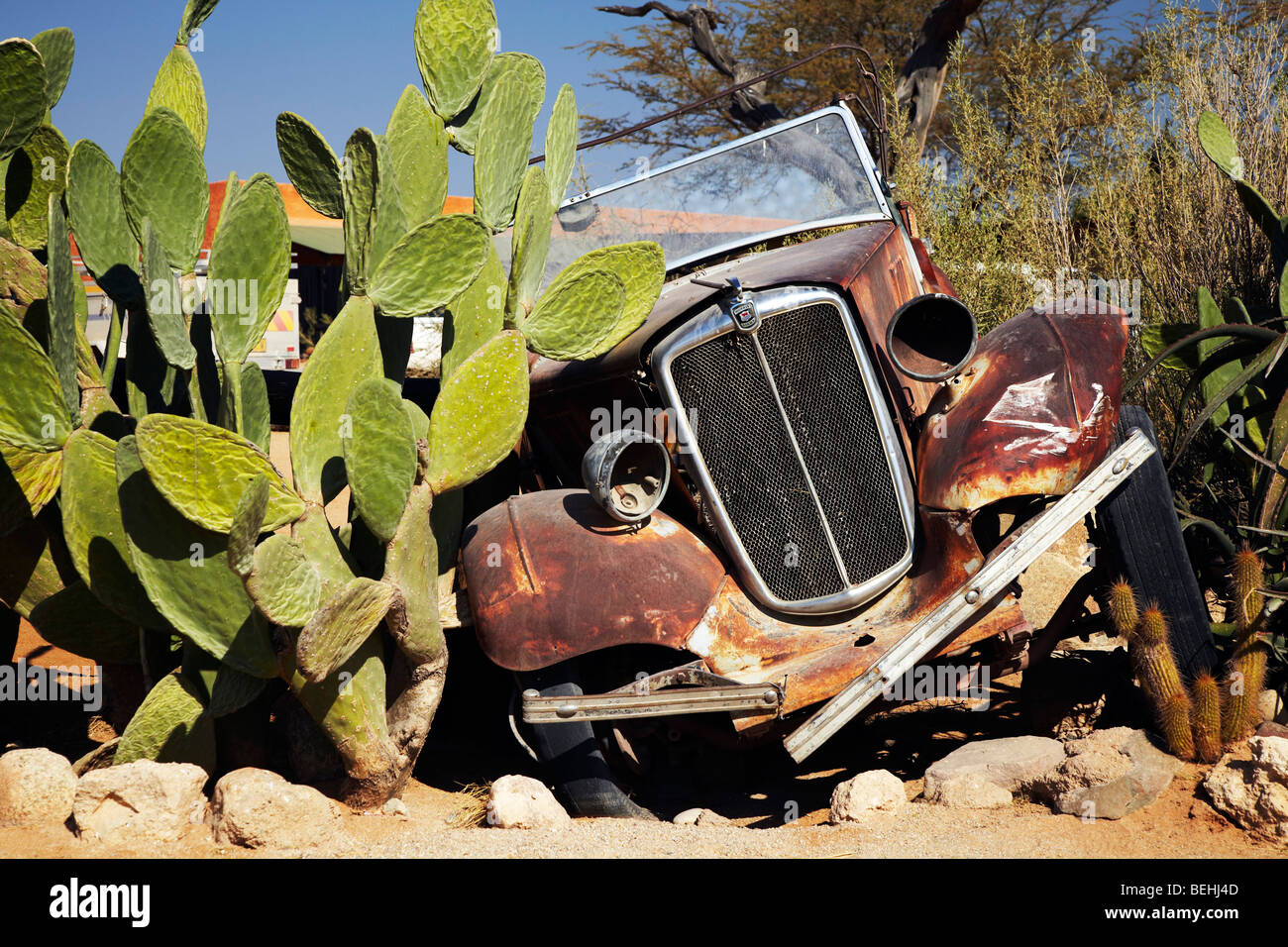 class car in cactus, Solitaire,  Namibia - Stock Image