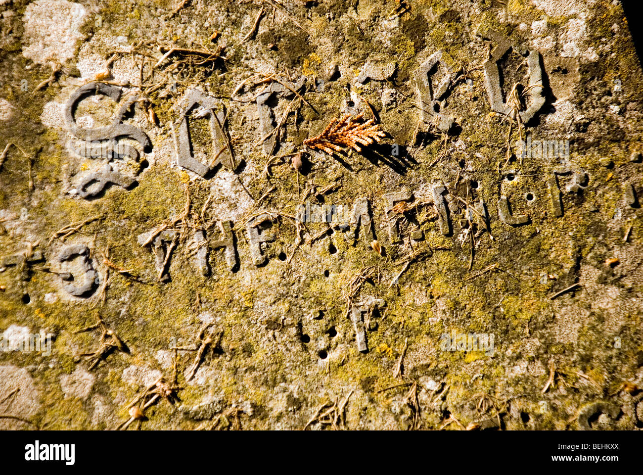 Inscription on an old tomb with letters missing saying 'Sacred To The Memory Of' - Stock Image