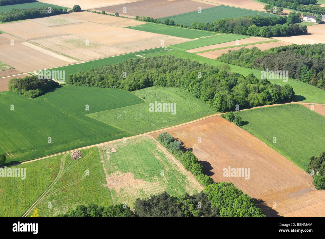 Agricultural area with fields, grasslands forested area and hedges from the air, Belgium - Stock Image