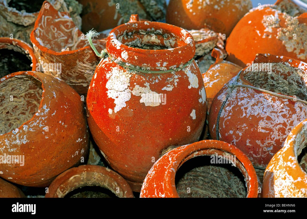 """Portugal, Algarve: Traditional """"alcatruzes"""" at the harbour of Santa Luzia in Tavira. Stock Photo"""