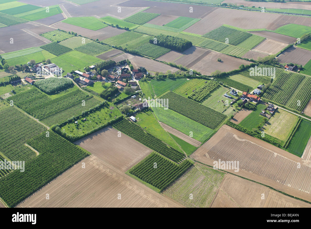 Urbanisation at the border of agricultural area with fields, grasslands and hedges from the air, Belgium Stock Photo