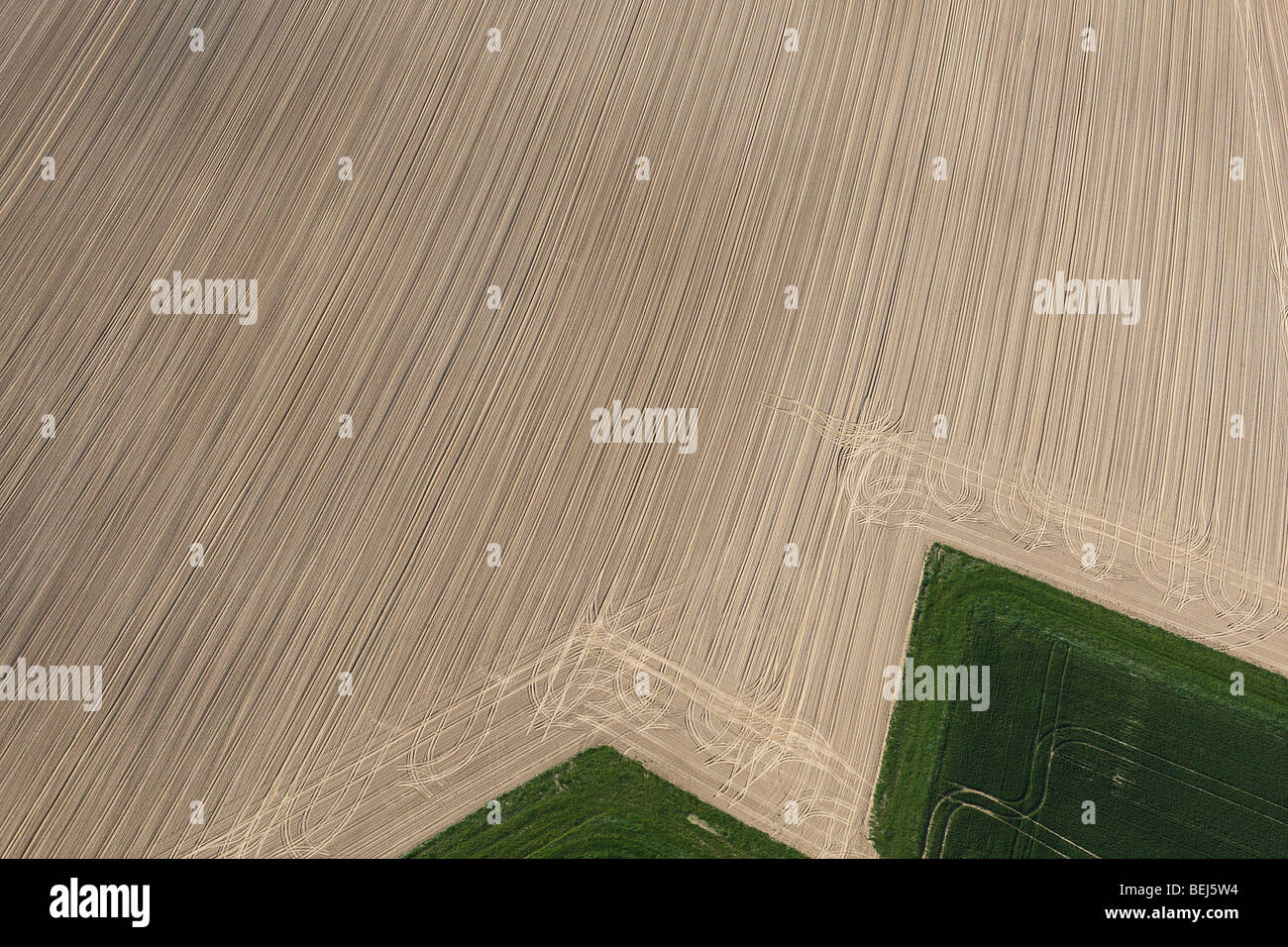 Agricultural area with fields from the air, Belgium Stock Photo