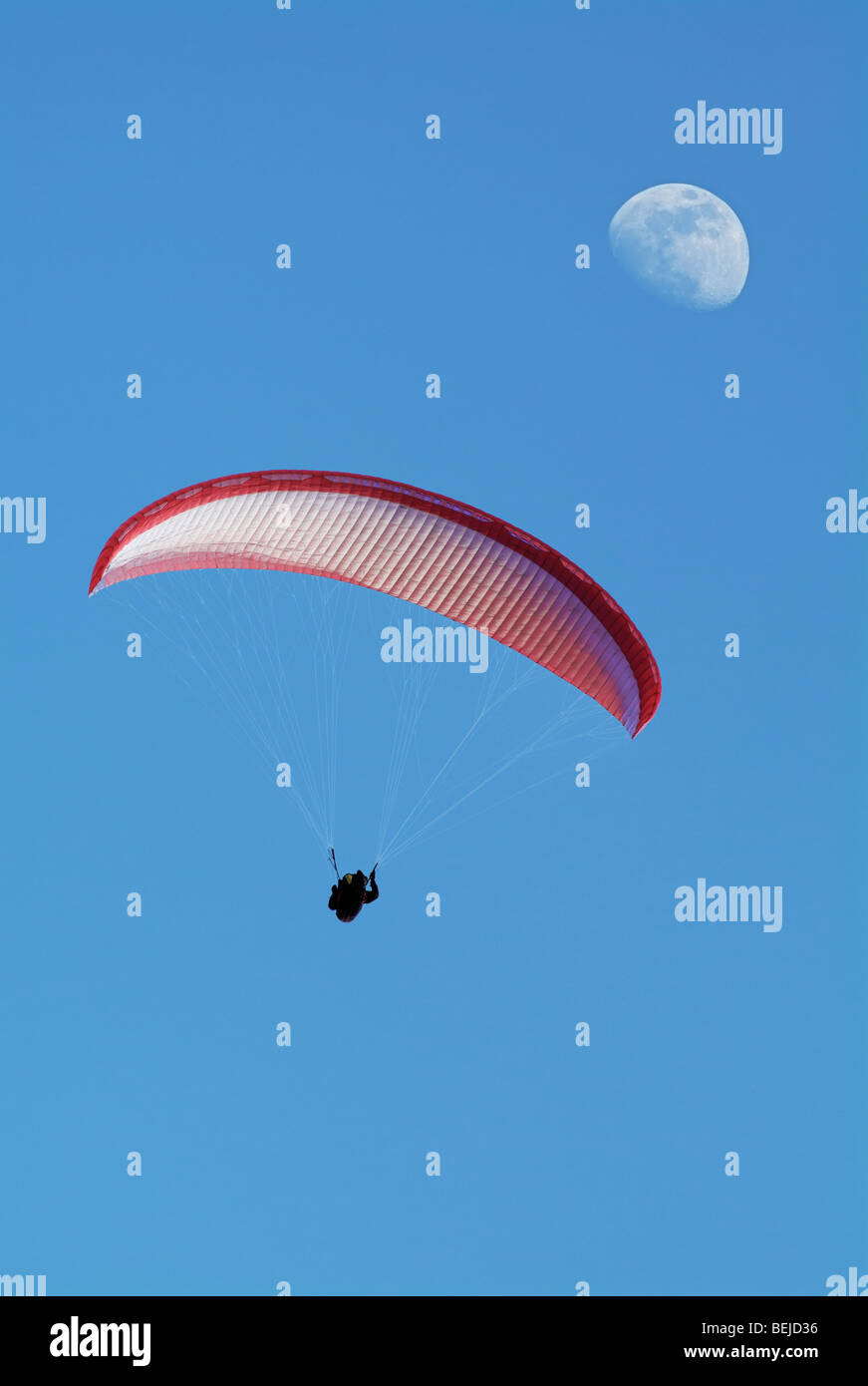 Paraglider in Mid Air, Low Angle. Stock Photo