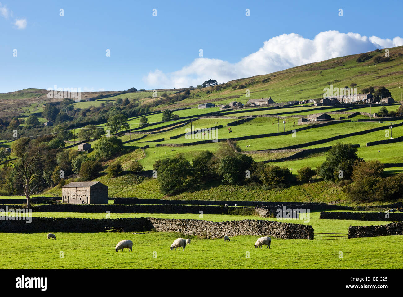 Yorkshire Dales countryside UK landscape, Swaledale, North Yorkshire, England, UK - Stock Image