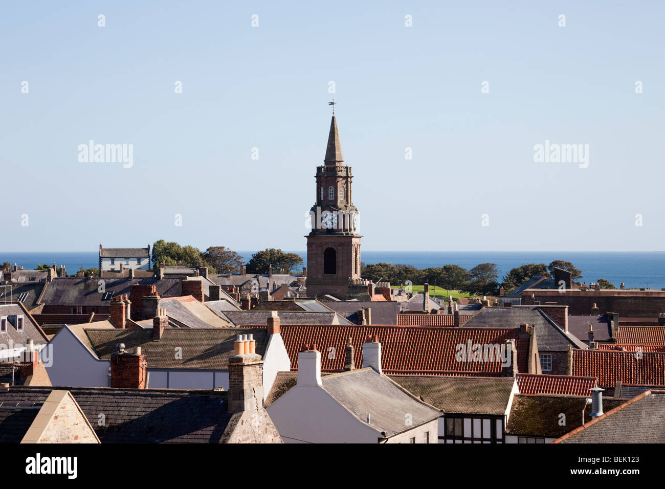 High view across rooftops to the Town Hall clock in border town centre. Berwick upon Tweed, Northumberland, England, - Stock Image