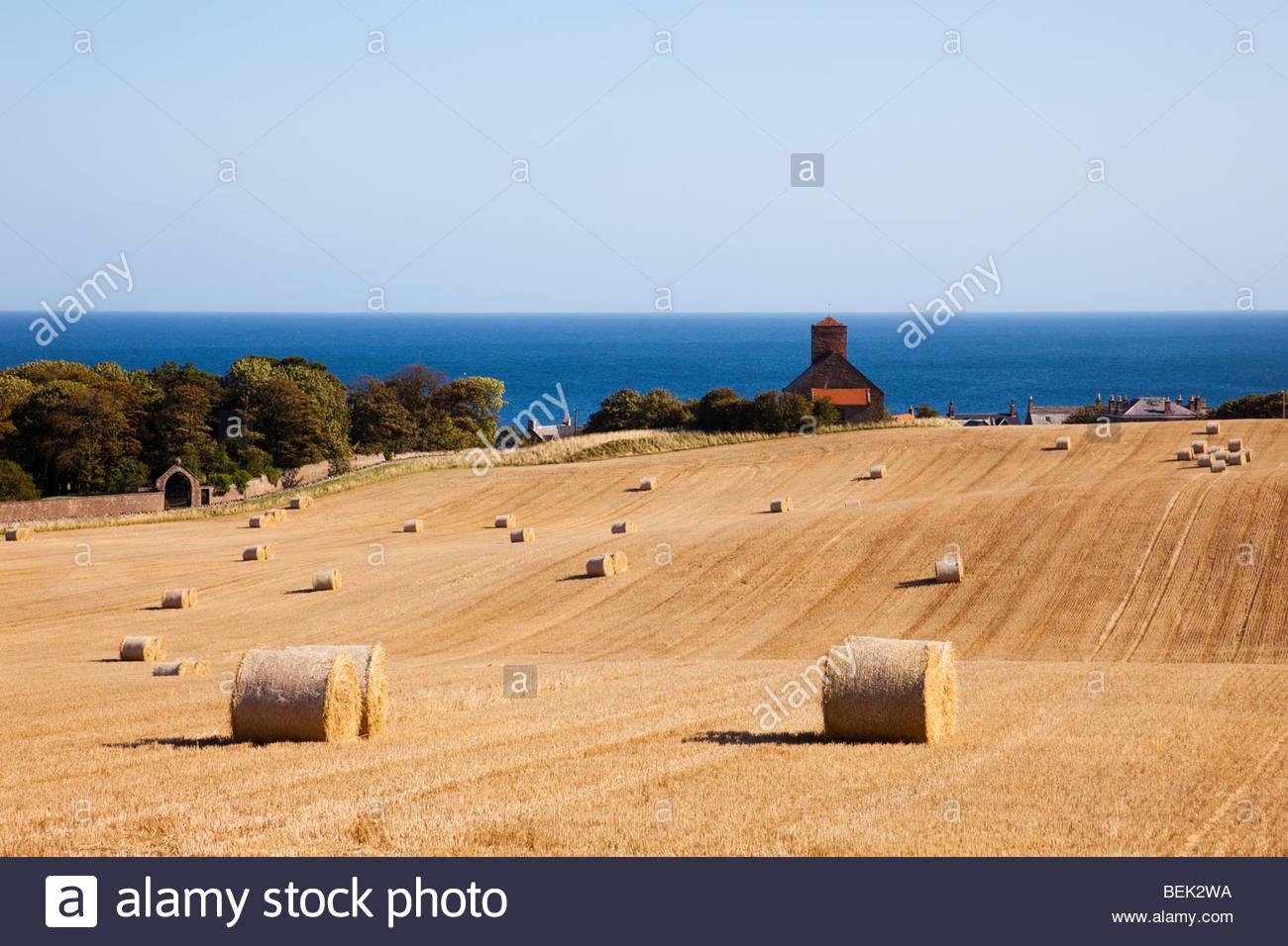 View across cut wheat field of round straw bales to village church on east coast. St Abbs, Berwickshire, Scottish - Stock Image