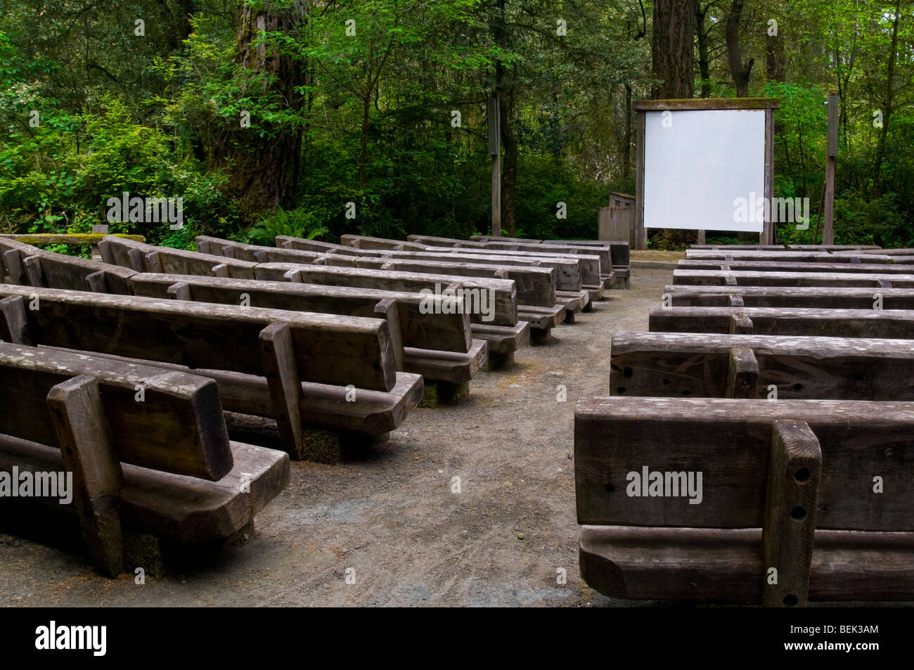 Outdoor amphitheater at the vistor center at Jedediah Smith Redwoods State Park, California - Stock Image