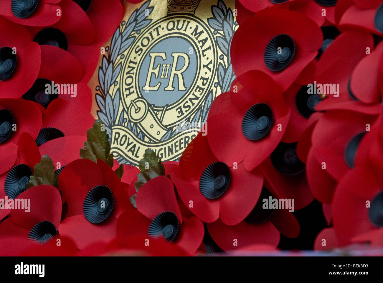 Wreaths, and crosses at Royal British Legion armistice day parade which is an annual event in the UK. - Stock Image